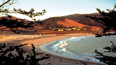 Carmel River Beach, Carmel-by-the-Sea (Photo courtesy of the Monterey County Convention and Visitors Bureau)